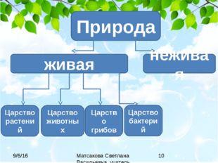 Природа живая неживая Царство растений Царство животных Царство грибов Царств
