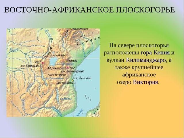 ВОСТОЧНО-АФРИКАНСКОЕ ПЛОСКОГОРЬЕ На севере плоскогорья расположеныгораКения...