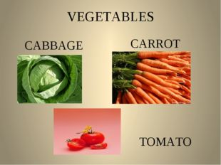 VEGETABLES CABBAGE CARROT TOMATO