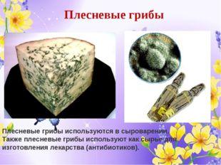 Плесневые грибы Плесневые грибы используются в сыроварении. Также плесневые г