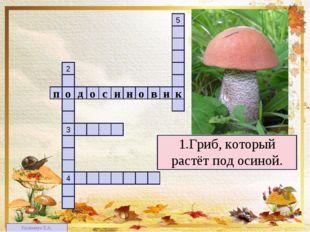1 4 3 2 5 1.Гриб, который растёт под осиной. п в о н и с о о д и к Килимчук Е