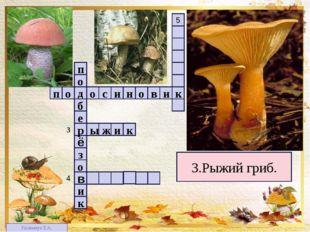 1 4 2 3 3 5 3.Рыжий гриб. п в о н и с о о д и к о з ё е б р о п к и 4 в к и ж