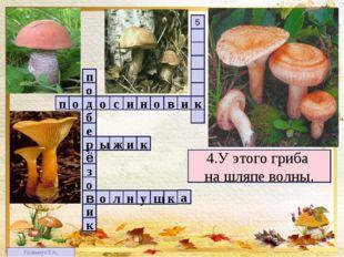 1 4 2 3 3 5 4.У этого гриба на шляпе волны. п в о н и с о о д и к о з ё е б р