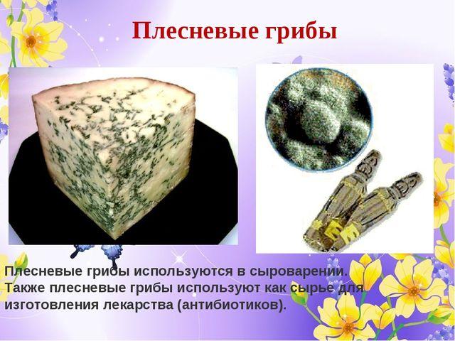 Плесневые грибы Плесневые грибы используются в сыроварении. Также плесневые г...