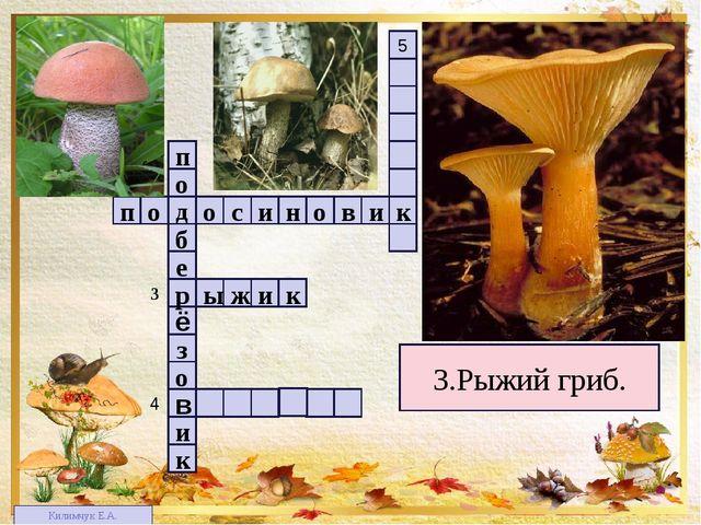 1 4 2 3 3 5 3.Рыжий гриб. п в о н и с о о д и к о з ё е б р о п к и 4 в к и ж...