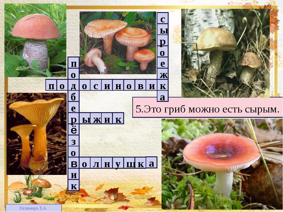 1 4 2 3 3 5 5.Это гриб можно есть сырым. п в о н и с о о д и к о з ё е б р о...