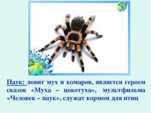 Паук: ловит мух и комаров, является героем сказок «Муха – цокотуха», мультфи