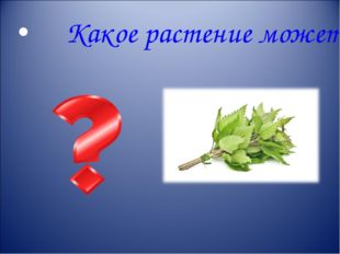 Какое растение может нас обжечь?