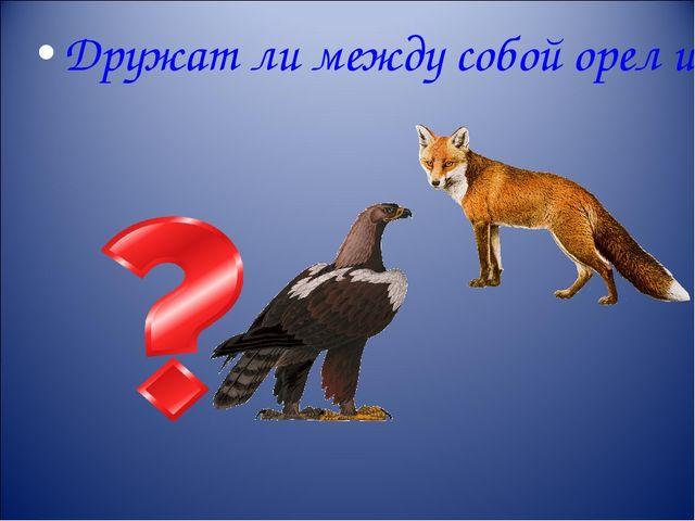 Дружат ли между собой орел и лисица?