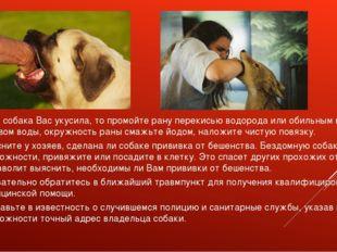Если собака Вас укусила, то промойте рану перекисью водорода или обильным кол
