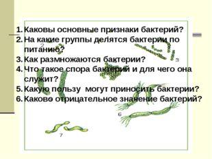 Каковы основные признаки бактерий? На какие группы делятся бактерии по питани