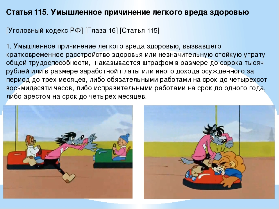 Статья 115. Умышленное причинение легкого вреда здоровью [Уголовный кодекс РФ...