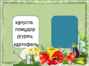 капуста помидор огурец картофель