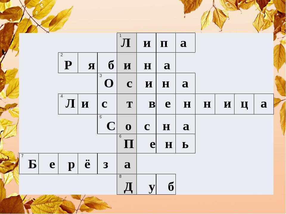 Л и п а Р я б и н а О с и н а Л и с т в е н н и ц а С о с н а П е н ь Б е р...