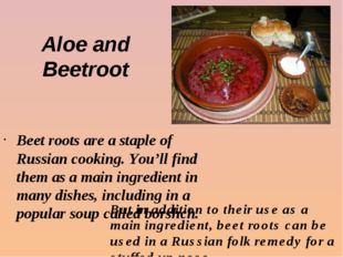 Aloe and Beetroot Beet roots are a staple of Russian cooking. You'll find the