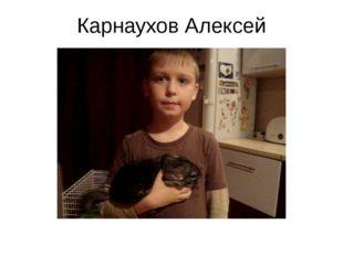 Карнаухов Алексей