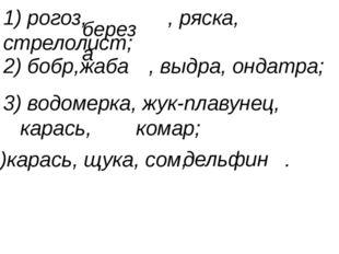 1) рогоз, , ряска, стрелолист; 2) бобр, , выдра, ондатра; жаба 3) водомерка,