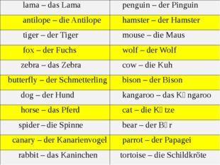 lama – dasLama penguin –derPinguin antilope– dieAntilope hamster –derHamster