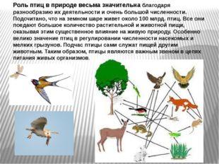 Роль птиц в природе весьма значительна благодаря разнообразию их деятельности