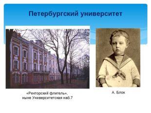 Петербургский университет «Ректорский флигель», ныне Университетская наб.7 А.