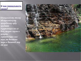 Уникальность этому австралийскому природному чуду придают окружающие его со в