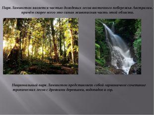 Парк Ламингтон является частью дождевых лесов восточного побережья Австралии,