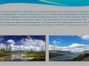 Округ можно назвать страной озер, большинство их сравнительно невелики и негл