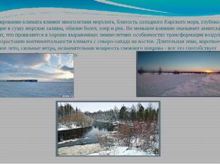 На формирование климата влияют многолетняя мерзлота, близость холодного Карск