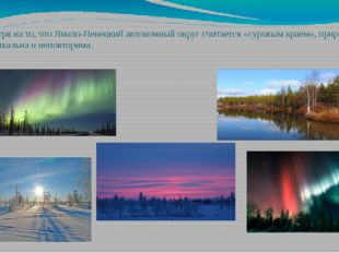 Не смотря на то, что Ямало-Ненецкий автономный округ считается «суровым краем