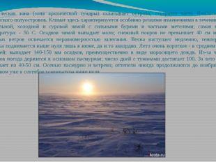 Арктическая зона (зона арктической тундры) охватывает острова, северную часть