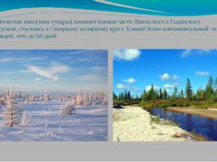 Субарктическая зона (зона тундры) занимает южные части Ямальского и Гыданског