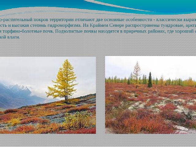 Почвенно-растительный покров территории отличают две основные особенности - к...