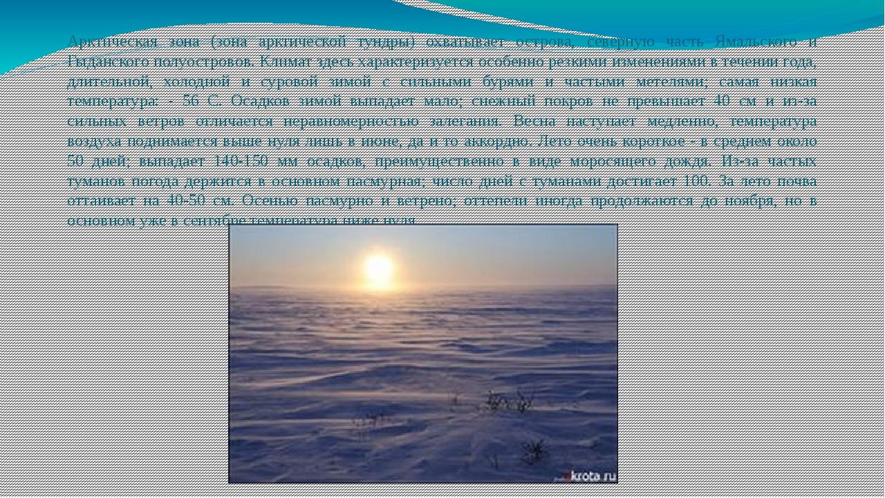 Арктическая зона (зона арктической тундры) охватывает острова, северную часть...