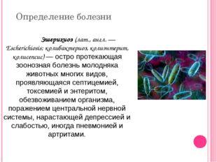 Определение болезни Эшерихиоз (лат., англ. — Escherichiosis; колибактериоз,