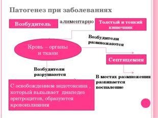 Патогенез при заболеваниях Возбудитель Толстый и тонкий кишечник алиментарно