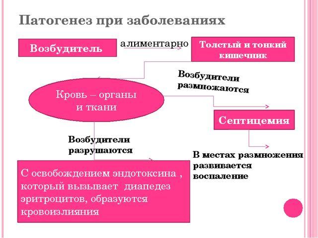 Патогенез при заболеваниях Возбудитель Толстый и тонкий кишечник алиментарно...