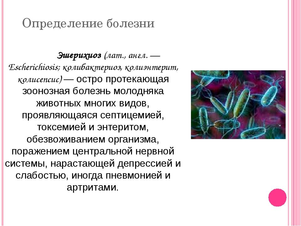 Определение болезни Эшерихиоз (лат., англ. — Escherichiosis; колибактериоз,...