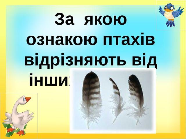 За якою ознакою птахів відрізняють від інших тварин?
