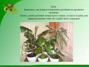 Цели Выяснить, как влияют комнатные растения на организм человека Узнать, как