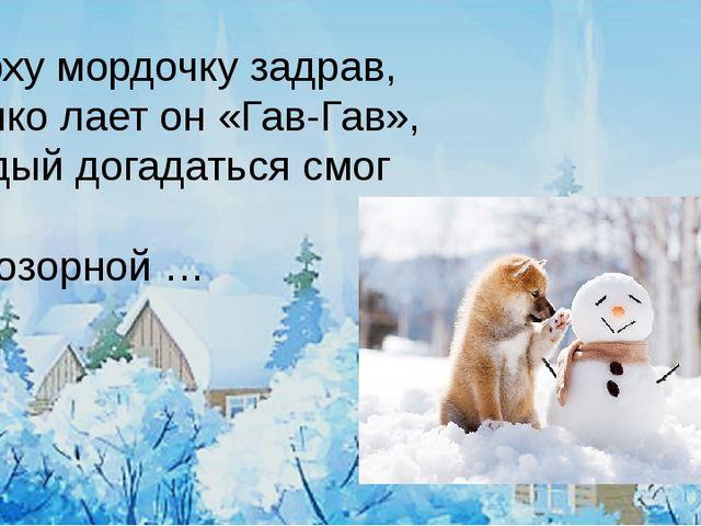 Несколько интересных фактов о собаках: Собаки понимают до250 слов ижестов,...