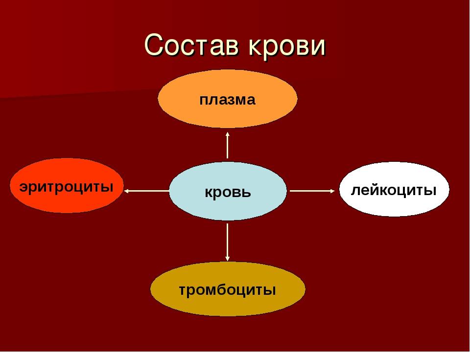 Состав крови плазма тромбоциты эритроциты лейкоциты кровь