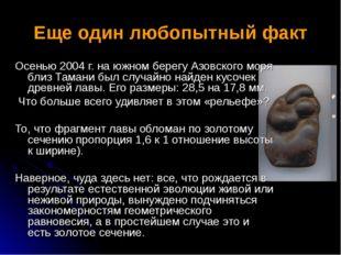 Еще один любопытный факт Осенью 2004 г. на южном берегу Азовского моря близ Т