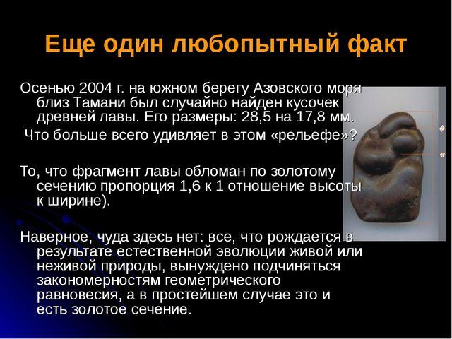 Еще один любопытный факт Осенью 2004 г. на южном берегу Азовского моря близ Т...
