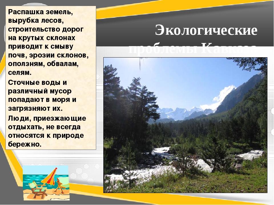 Экологические проблемы Кавказа Распашка земель, вырубка лесов, строительство...
