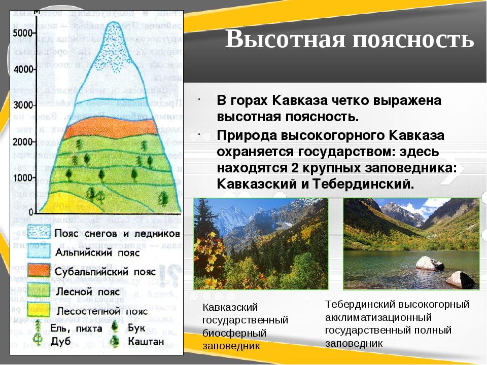 Высотная поясность В горах Кавказа четко выражена высотная поясность. Природа...