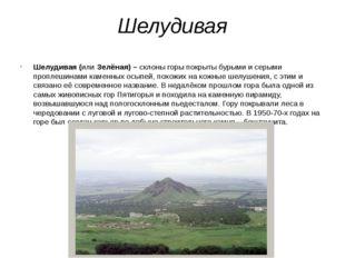 Шелудивая Шелудивая (или Зелёная) – склоны горы покрыты бурыми и серыми пропл
