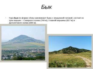 Бык Гора Бык по форме сбоку напоминает быка с опущенной головой, состоит из т