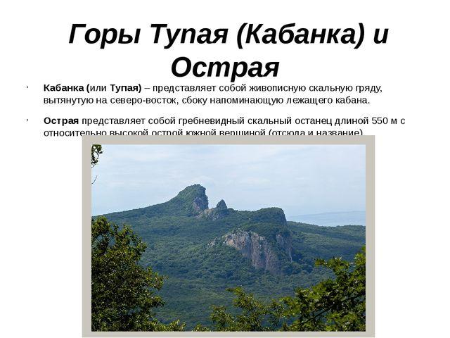 Горы Тупая (Кабанка) и Острая Кабанка (или Тупая) – представляет собой живоп...