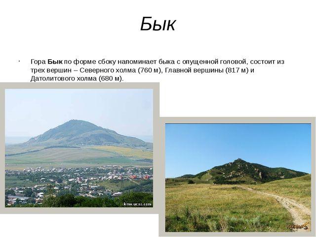 Бык Гора Бык по форме сбоку напоминает быка с опущенной головой, состоит из т...