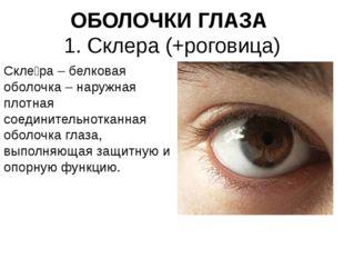ОБОЛОЧКИ ГЛАЗА 1. Склера (+роговица) Скле́ра – белковая оболочка – наружная п